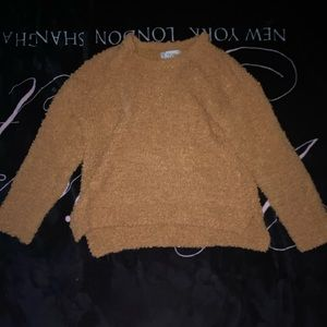 Cropped Sweater from Francesca's